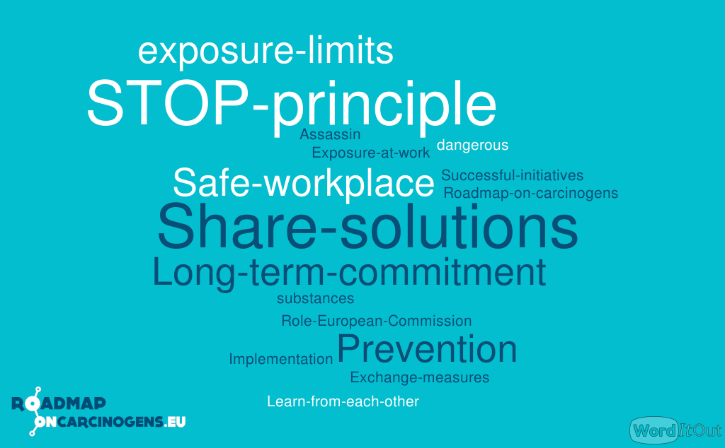 Wordcloud: expectations conference